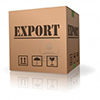 export h 100 w100